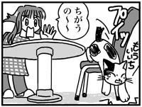 090216nekokan16